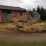 Martwe konie znalezione w Bereżnicy Wyżnej