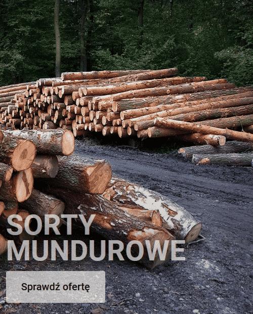 Sporty-Mundurowe